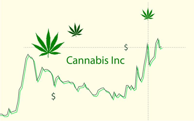 shutterstock_118751cannabis-inc-illustration-pot-stock-market8072